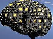 Abusi abbandono cambiano cervello bambini adolescenti