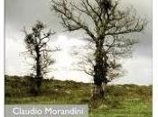 gran giornate, Claudio Morandini