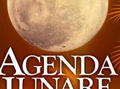 Tremate, streghe... moderne tornate! L'Agenda Lunare 2013 Stacey Demarco