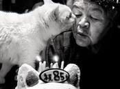 Misao fukumaru... toccante amicizia vecchietta gatto