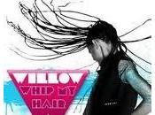 Willow Whip Hair Video Testo Traduzione