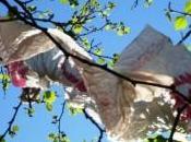 Addio sacchetti plastica (non mancherete)