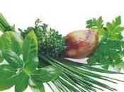 Erbe Aromatiche condimenti naturali