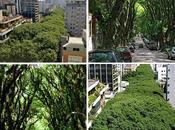 Verde Urbano mondo.