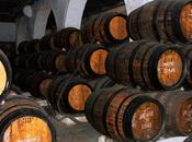 Dove bere miglior vino Oporto