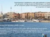Cagliari, domenica speciale Porto. dicembre organizza Wave Sardegna