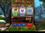Slot Machine Windows simulazione realistica sala giochi virtuale