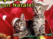 Auguri Buon Natale 2012!