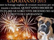 Capodanno botti tutela animali Ecco consigli dell'addestratore comportamentalista Luigi Polverini