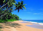 Nuova direzione Terre Lanka