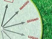Zecche.vaccino gratuito residenti friuli venezia giulia