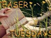 "TEASER TUESDAYS... (EPISODIO ""Anna Karenina"" Tolstoj piedi nudi nell'erba"" Susan Mallery"