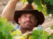 Proprietà benefici pelle: l'uva protagonista della ricetta mese settembre