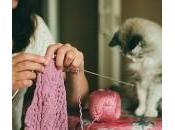 "nuovo hobby delle star ""fare lana"""
