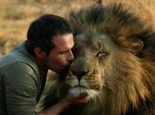 Video Kevin Richardson, l'uomo sussurra leoni