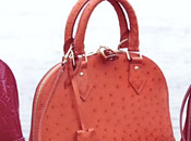 Louis Vuitton loving