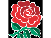 Nazioni 2013: nuovi arrivi l'Inghilterra