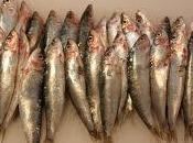 Sardine profumate forno, secondo Quaresima