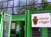 FOGGIA maxi prestito salvare conti comunali Aumenteranno tasse