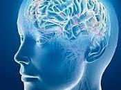 Nobiltà della politica: Obama lancerà progetto sullo studio dell'attività cerebrale. Previste importanti ricadute malattie come l'Alzheimer Parkinson