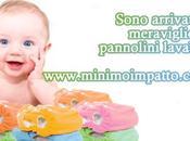 econovità della newsletter @MinimoImpatto: pannolini lavabili, cuscini bebè, rose Jericho