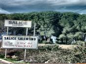 SalentOS 12.04.2 released