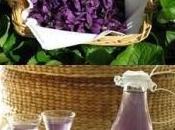 Liquore, Sciroppo, Kir, Rosolio, Canditi Violette