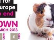oggi stop test cosmetici animali Europa