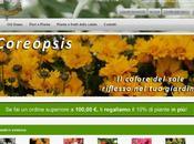 Edelweiss vivai shop
