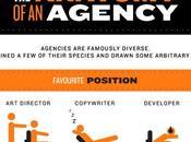 Anatomia Agency #Infografica