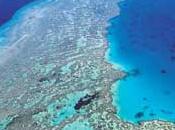 Great Reef, gemma nascosta delle Isole Fiji