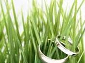 Organizzare matrimonio ecologico