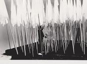 Riflessioni sull'arte Mario Ceroli, faccia
