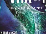 Home video: Vita