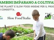 Intervista Grow Planet: cosa quanto