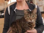 """Tosano schiena gatto scrivono messaggio padrona:""""sterilizzalo!"""""""
