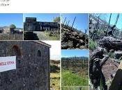 """successo della edizione manifestazione contrade dell'Etna"""""""