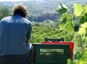 vino vignaiolo-scrittore