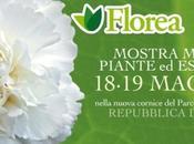 Florea Marino 2013 mostra mercato piante essenze rare