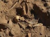 Ritrovati resti soldato Egitto