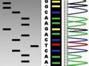 Dalla chimica alla biologia molecolare esplorare genoma
