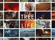 tree life 2011