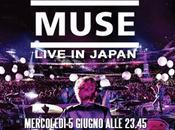 grande musica Muse live Japan
