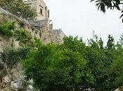"""""""Giardini sonori"""", iniziativa Club Unesco valorizzare ville giardini dimenticati"""