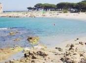Guida 2013: ecco migliori località balneari d'Italia