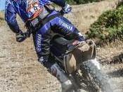 Sardegna Rally Race: Cyril Despres proprio debutto assoluto colori diapason