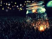 Lucciole,il fascino della natura nelle notti d'estate..
