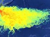 Nucleare: Fukushima aumentata volte radioattivita' acqua