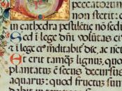 Farina Crusca, l'italiano (s)conosciuto (4): quesiti comuni, dubbi antichi.