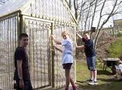 Green Greenhouse: struttura compatibile adibita serra. Scopri come costruirla mosse